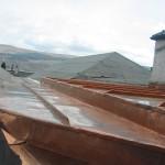 Argyll Copper Gullys13