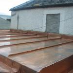 Argyll Copper Gullys14