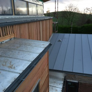 Stainless Steel Cills & Zinc Roof